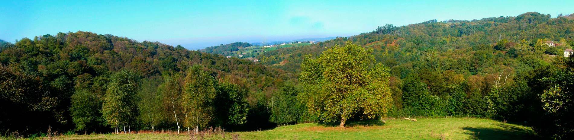 Vista panoramica del entorno de La Llariega
